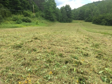 Field Mowing Vermont